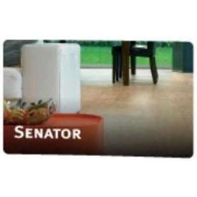 На фото Senator