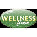 На фото Wellness 32