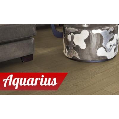 На фото Aquarius