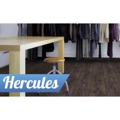 На фото Hercules