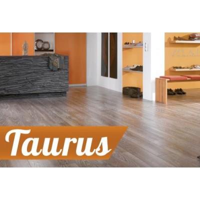 На фото Taurus