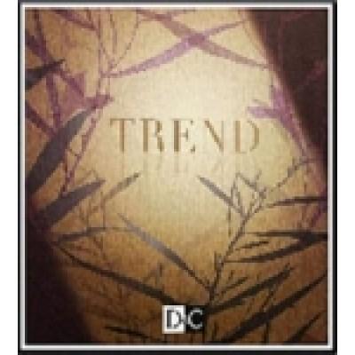 На фото Trend 2