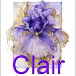 На фото Clair