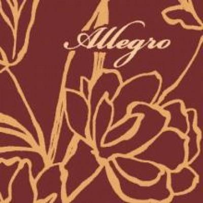 На фото Allegro