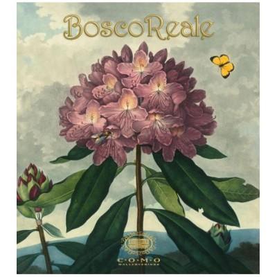 На фото Boscoreale