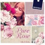 На фото Pure Rose