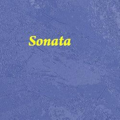 На фото Sonata