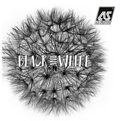На фото Black and White 3
