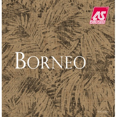 На фото Borneo