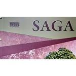 На фото Saga