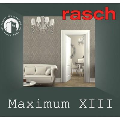 На фото Maximum XIII