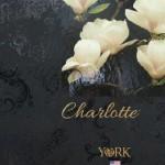 На фото Charlotte