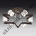 На фото Настенно-потолочный светильник Blitz 3535-36