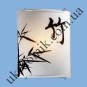 На фото Настенно-потолочный светильник Blitz 2514-11