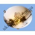 На фото Настенно-потолочный светильник Blitz 2971-21